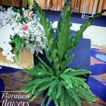 Stage Floral Decoration Set