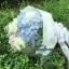 ช่อดอกไม้ ไฮเดรนเยีย ฟ้า-ขาว-ชมพู (M) thumbnail 1