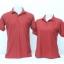 เสื้อโปโลชาย สีเลือดหมู ไซส์/2XL/รอบอก44