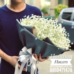 ช่อดอกไม้ ยิปโซ (L)