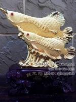 ปลามังกรคาบเหรียญ ของขวัญวันเกิดให้ผู้ใหญ่