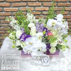 กล่องดอกไม้ ฟาแลน พรีเมี่ยม (L)