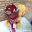ตุ๊กตาหมีช่อกุหลาบแดง (L) thumbnail 1