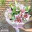 ช่อดอกไม้ลิลลี่สีชมพูหวานล้วน (M) thumbnail 3