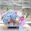 Floraison box white & blue