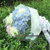 ช่อดอกไม้ ไฮเดรนเยีย ฟ้า-ขาว-ชมพู (M)